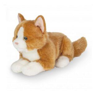 λούτρινη γάτα Teddy